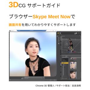 3DCG Skype Meet Now Google Meet オンラインビデオチャットサポート PDF